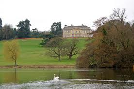 activities for kids at Gatton Park